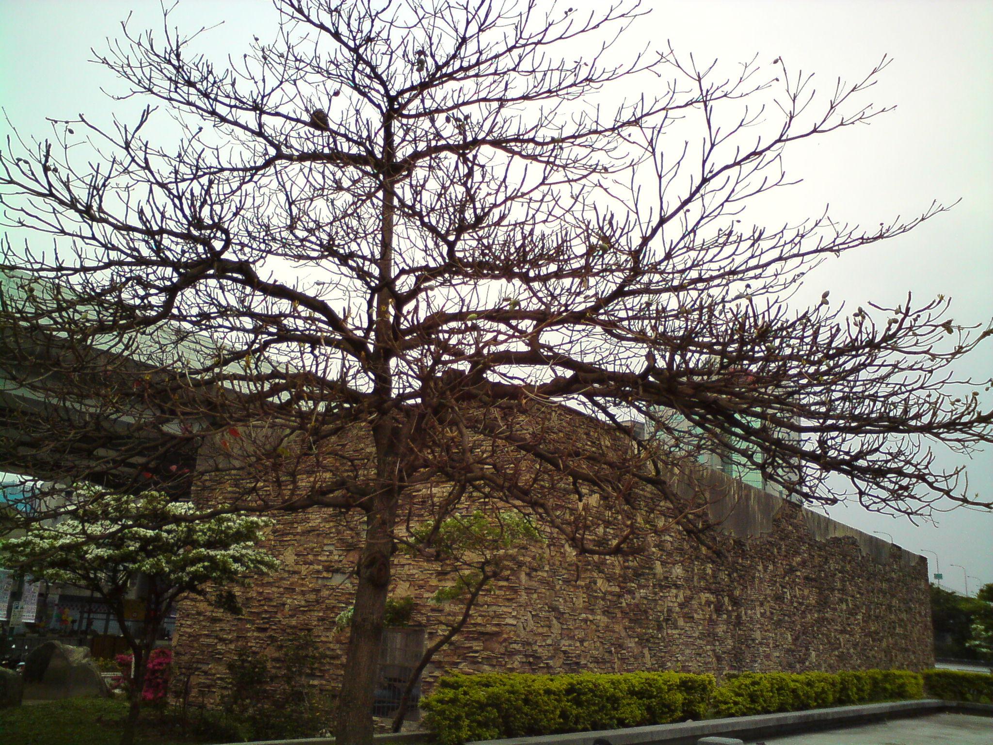 20110403 台北車站 (5).JPG
