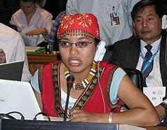 2006參加第五屆聯合國原住民議題常設論壇發言