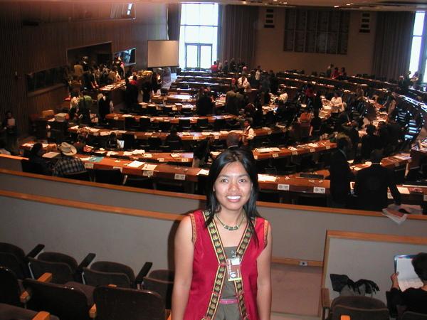 2006年紐約聯合國總部會議廳