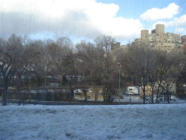 中央公園4.jpg