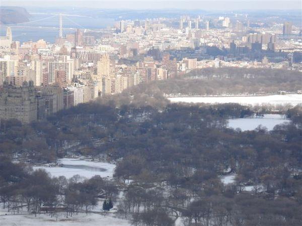 從洛克斐勒大樓鳥瞰中央公園.jpg