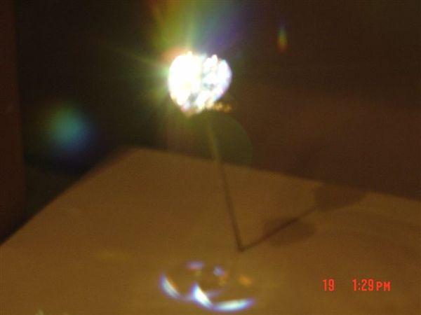 2007NY-2 169.jpg