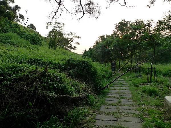 20130901-竹坑南寮步道 (117)-H2056