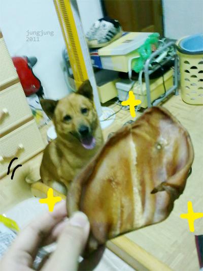 blog0426_06.jpg