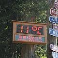 正中午居然只有11℃