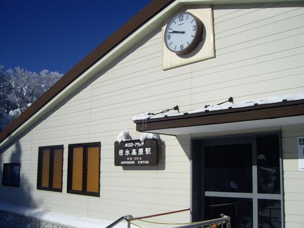 今天來到樹冰高原站