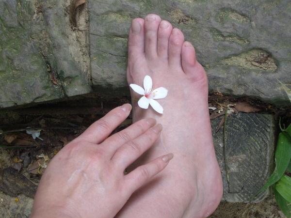 這是小芹的腳