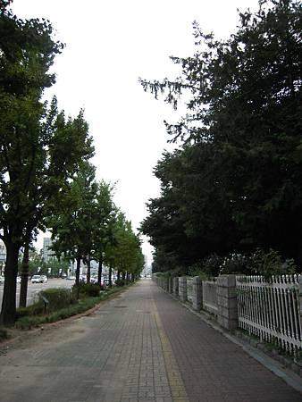 DSCN3305.JPG