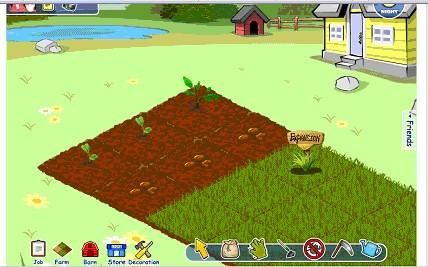 farm - 2.jpg