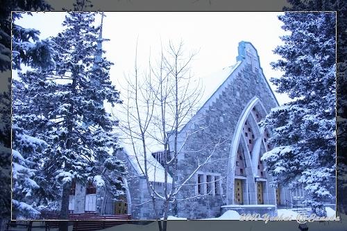 雪中觀光 (相機調錯白平衡orz...)