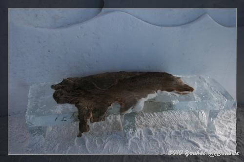 ICE HOTEL-坐在毛皮上很暖
