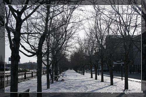 MONTREAL-舊城區-喔喔~好有冬天的FU~
