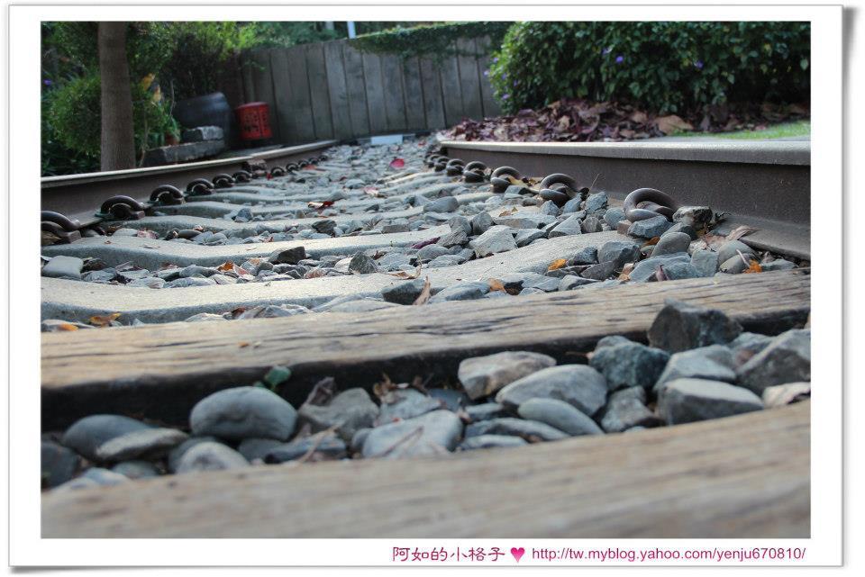 鐵道魚 (11).jpg