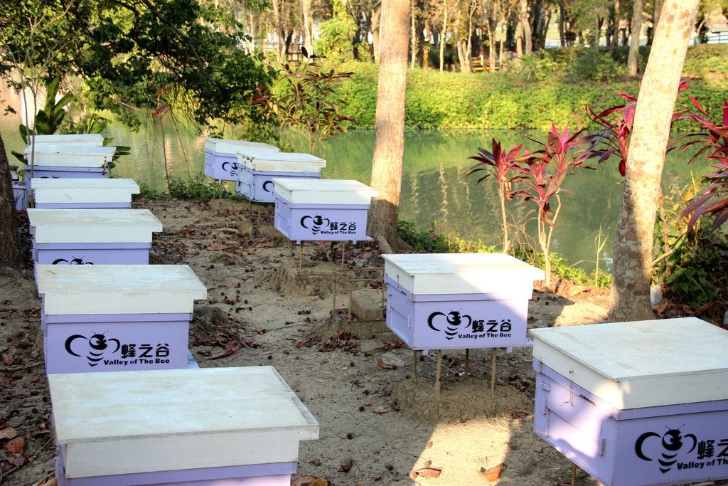 江南渡假村 (7).JPG