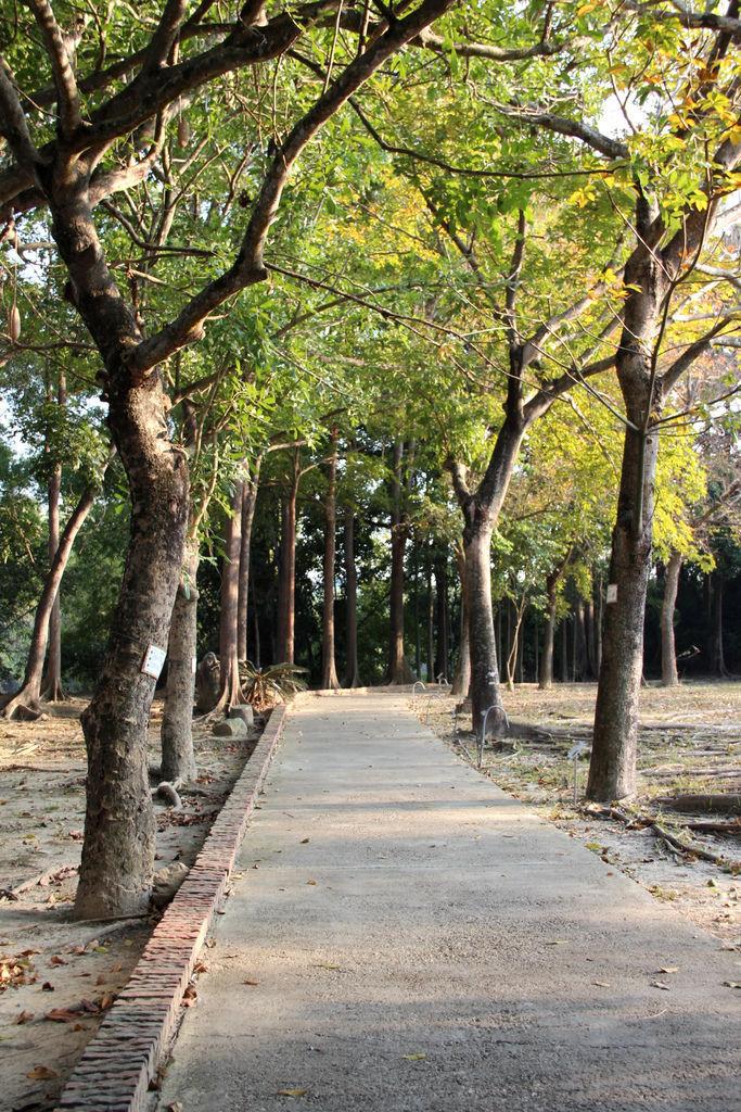 江南渡假村 (9).JPG