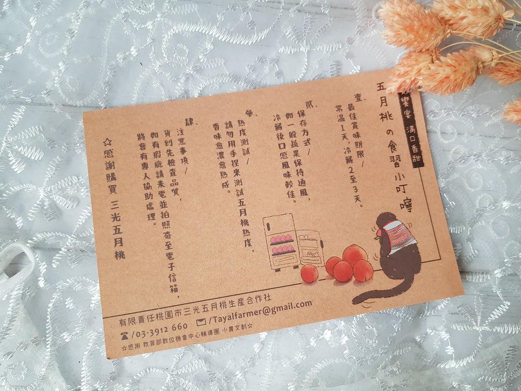 【無毒農】五月桃 (13).jpg