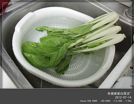 黑葉白菜-1