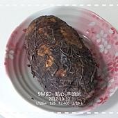 芋頭泥-1