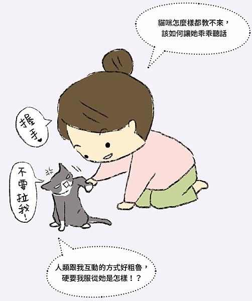 教養貓咪社會化