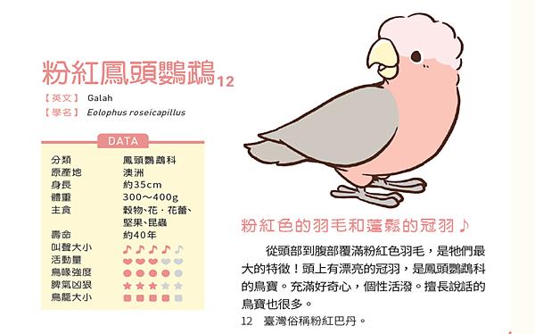 鳥3.png