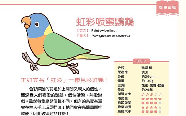 鳥4.png