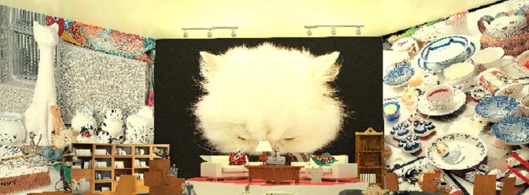 貓迷--貓牆
