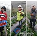 草莓趴兔團_26.jpg