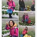 草莓趴兔團_34.jpg