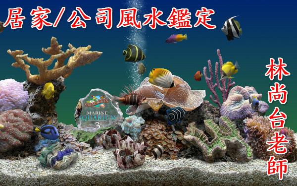 2011925233043764860_600_0_meitu_1.jpg