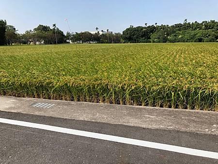 神岡可分割都內田1520_181124_0003.jpg