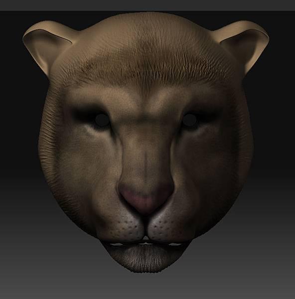 獅子臉部正視圖