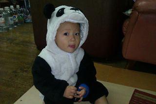 貓熊葦雋2
