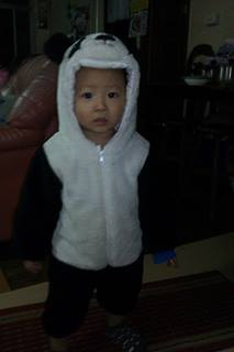 貓熊葦雋3