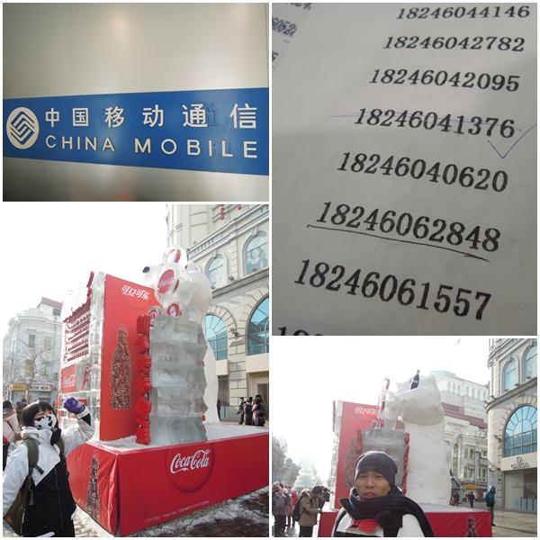 Harbin2