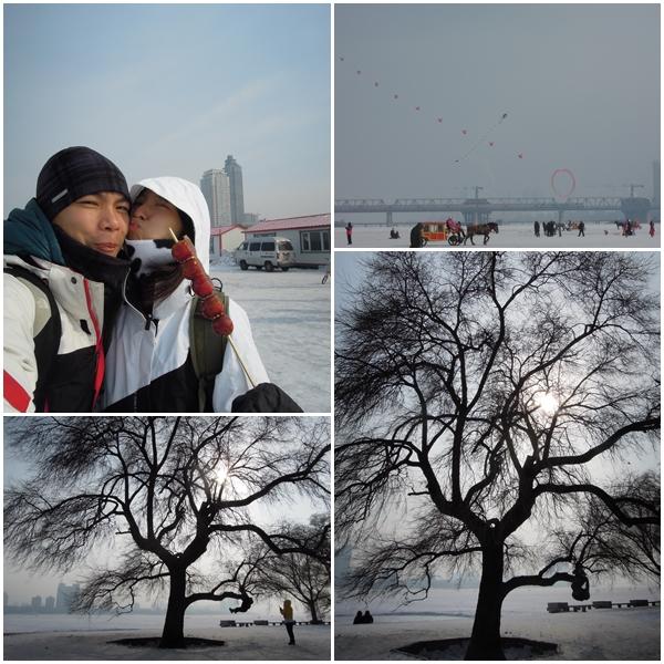 Harbin8