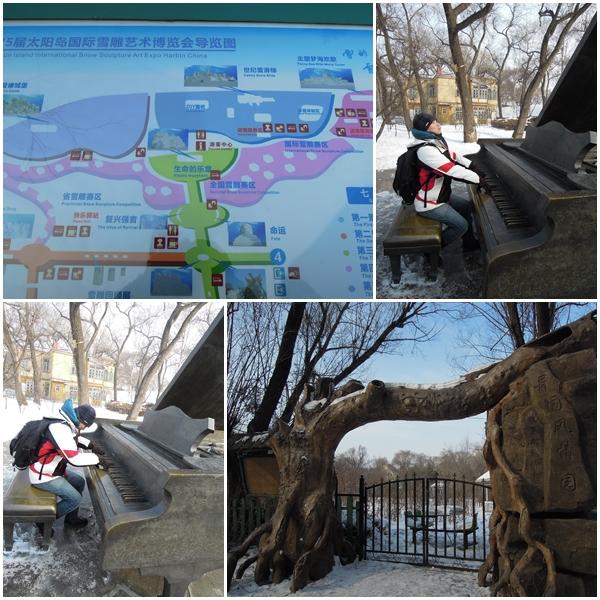 Harbin9