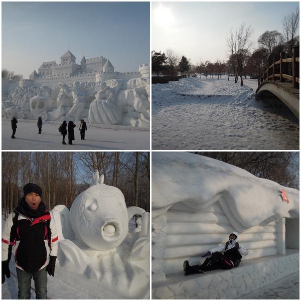 Harbin15