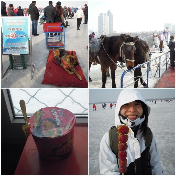 Harbin7