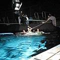 何導演在水中辛苦拍攝