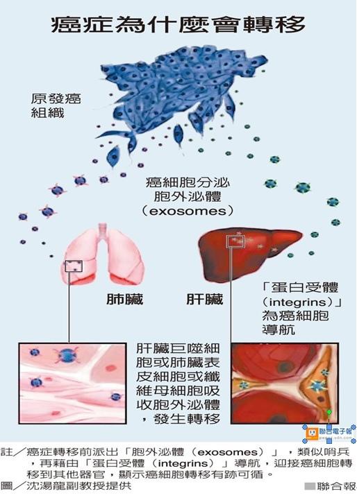 癌細胞為何會轉移.jpg