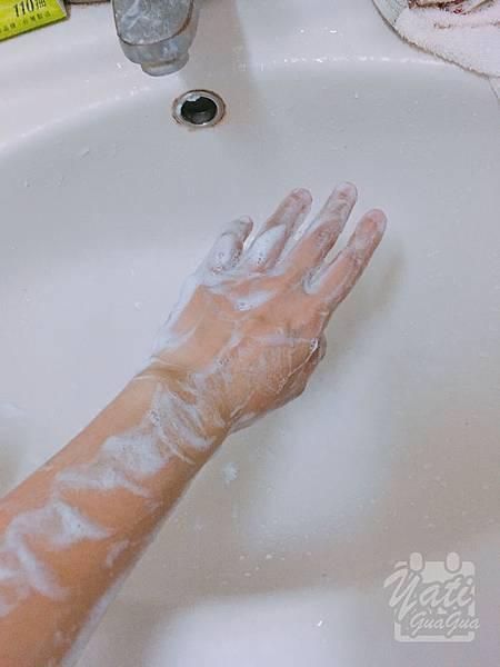 dalli純植物油親膚抗敏洗衣皂-19.JPG