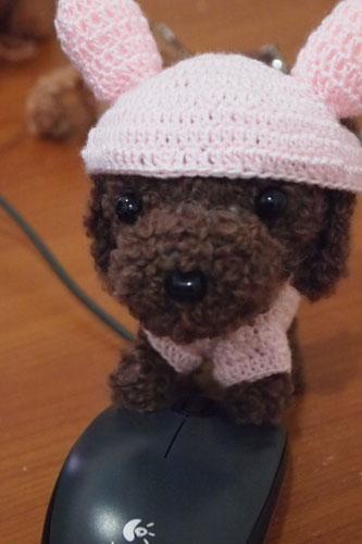 穿兔兔裝的咖啡貴賓娃娃