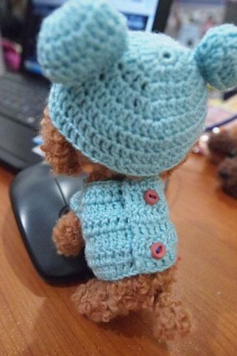 穿熊熊裝的紅貴賓娃娃