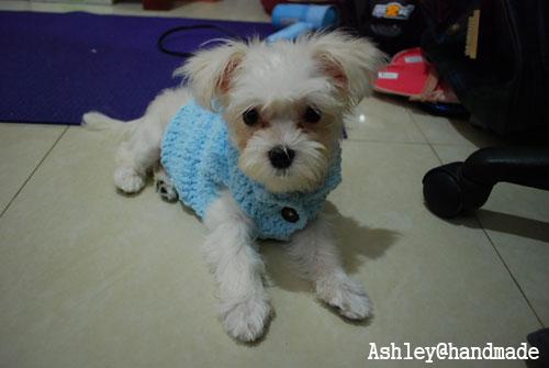 水藍色保暖衣