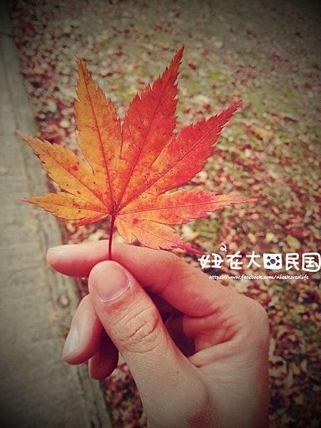 C360_2012-10-28-15-22-14 copy