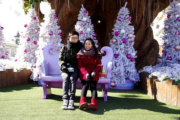 紅綠與純白聖誕樹