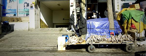 2011.1.26 明洞 東大門