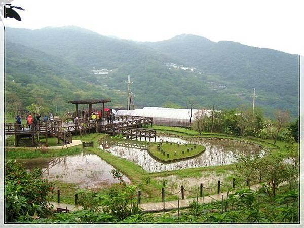 雨天的白石湖吊橋_016