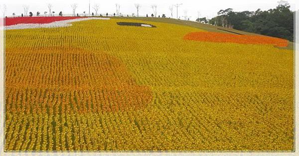 黃色小鴨紙風車_012