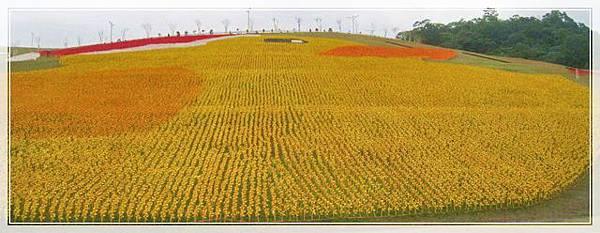 黃色小鴨紙風車_022